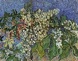 Vincent van Gogh Blossoming Chestnut Branches painting