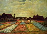 Vincent van Gogh Bulb Fields painting