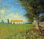 Vincent van Gogh Farmhouses in a Wheat Field painting