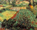 Vincent van Gogh Field with Poppies painting