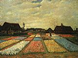 Vincent van Gogh Flower Beds in Holland painting