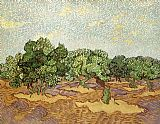 Vincent van Gogh Olive Grove II painting
