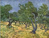 Vincent van Gogh Olive grove I painting