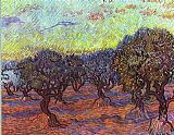 vincent van gogh Paintings - Olive grove
