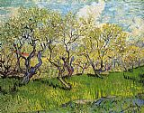 Vincent van Gogh Orchard in Blossom 4 painting
