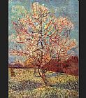 pear tree Canvas Prints - Peach Tree in Bloom