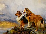 Wright Barker Two Collies Above a Lake painting