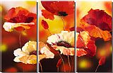 Floral paintings - by flower