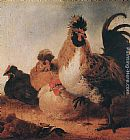 Aelbert Cuyp Rooster and Hens painting