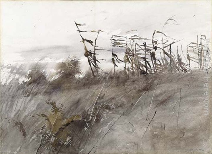 Andrew Wyeth November First