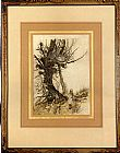 Arthur Rackham Alice In Wonderland Alice And the Cheshire Cat painting