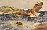 Bruno Liljefors A Sea Eagle Chasing Eider Duck painting