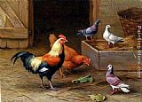 Edgar Hunt Chickens, Pigeons and a Dove painting