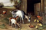 Edgar Hunt Goats And Poultry painting