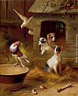 Edgar Hunt Pigeons And Puppies painting