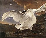 Jan Asselyn The Threatened Swan painting