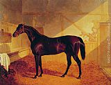 John Frederick Herring Snr Mr Johnstone's Charles XII in a Stable painting