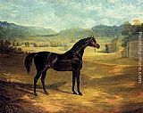 John Frederick Herring Snr The Bay Stallion Jack Spigot painting