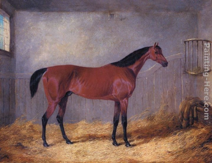John Frederick Herring, Jnr The Duke Of Grafton's Bolivar In A Stable