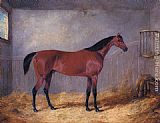 John Frederick Herring, Jnr The Duke Of Grafton's Bolivar In A Stable painting