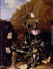 Otto Marseus Van Schrieck Still Life Of A Thistle And Other Flowers Surrounded By Moths, A Dragonfly, A Lizard, And A Snake, In A Landscape painting