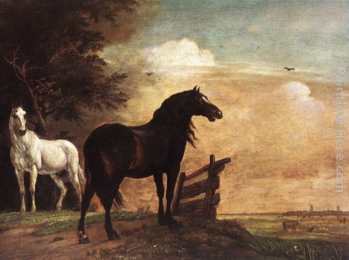 Paulus Potter Horses in a Field
