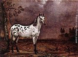 Paulus Potter The Spotted Horse painting