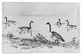 Shepard Alonzo Mount Wild Geese (from McGuire Scrapbook) painting