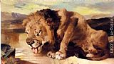 Sir Edwin Henry Landseer Lion Drinking At A Stream painting