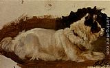 Sir Edwin Henry Landseer Study Of A Chow painting