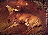 Sir Edwin Henry Landseer Study Of A Dead Stag painting