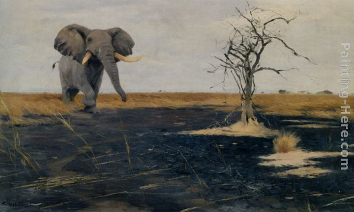 Wilhelm Kuhnert The Lone Elephant