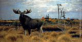 Wilhelm Kuhnert Elks In A Marsh Landscape painting