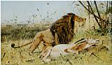 Wilhelm Kuhnert Lion and his Prey painting
