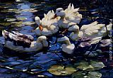 Willem Koekkoek Five Ducks In A Pond painting