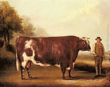 William Davis A Dark Roan Bull painting