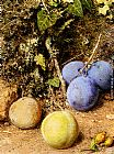 William Henry Hunt Still Life With Greengages And Plums On A Mossy Bank painting