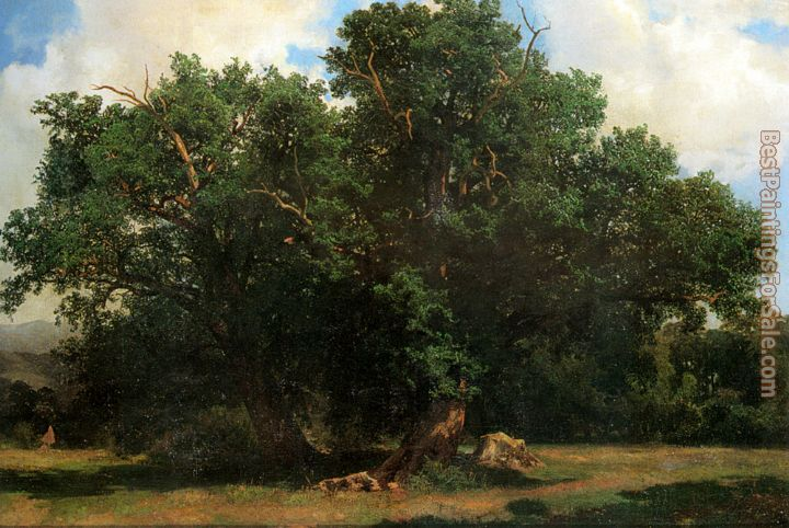 Alexandre Calame Paintings for sale