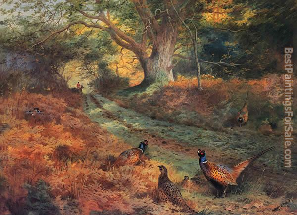 Archibald Thorburn Paintings for sale