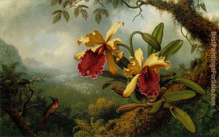Martin Johnson Heade Paintings for sale