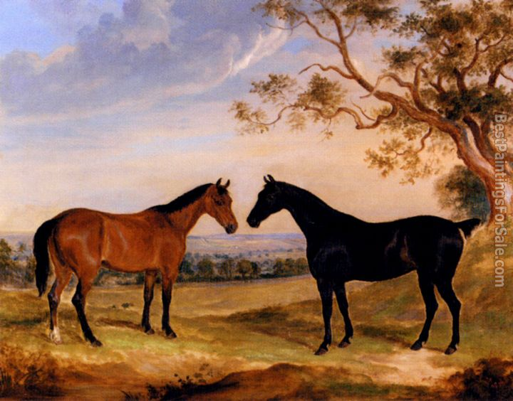 William Webb Paintings for sale