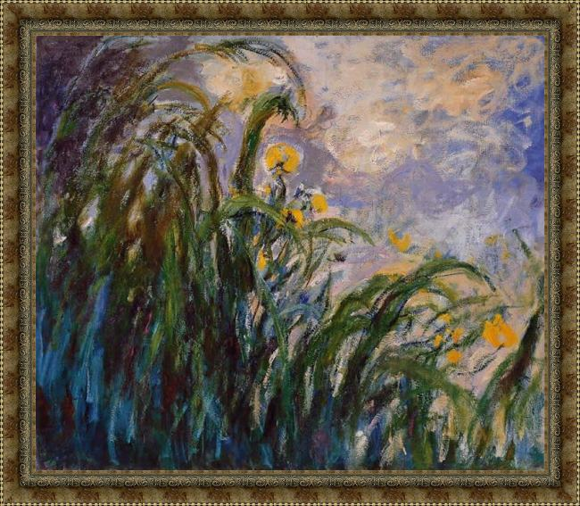 Framed Claude Monet les iris jaunes 1824 painting