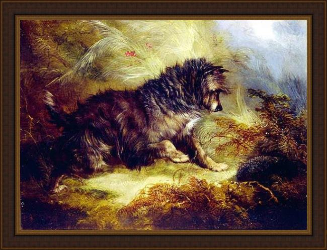Framed George Armfield a terrier and a hedgehog painting