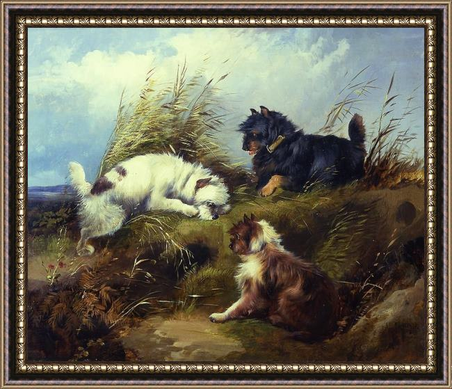 Framed George Armfield terriers painting