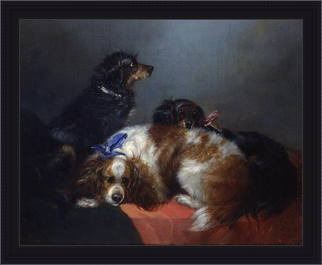 Framed George Armfield two king charles spaniels and a terrier painting
