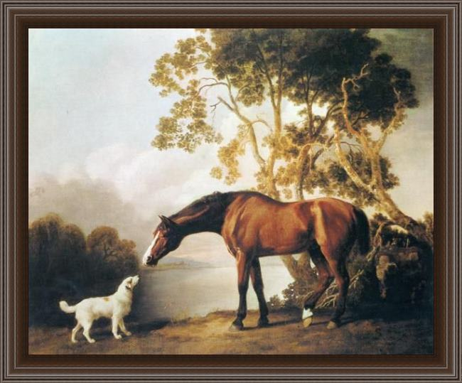 Framed George Stubbs bay horse and white dog painting