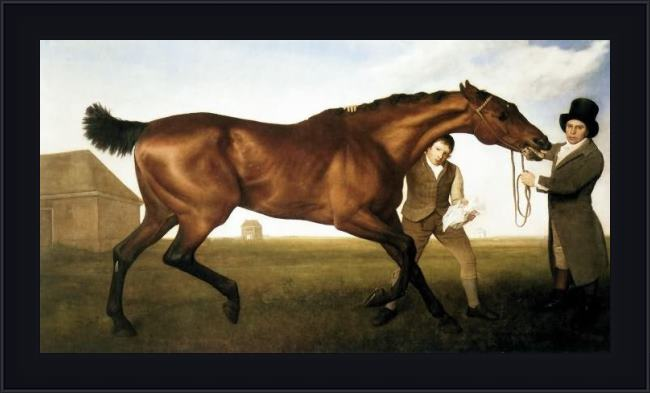 Framed George Stubbs hambletonion painting