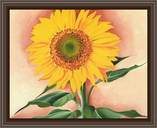 Framed Georgia O'Keeffe a sunflower from maggie 1937 painting
