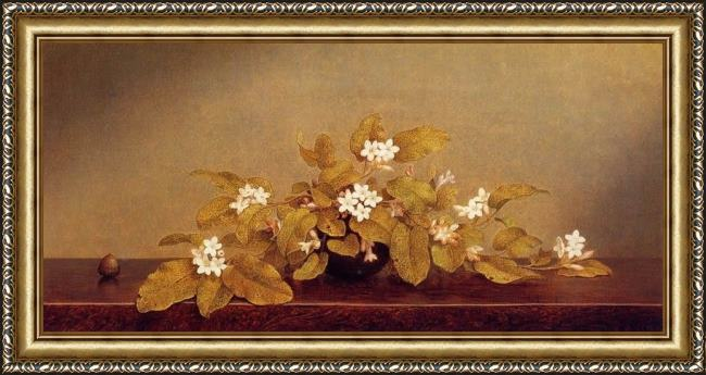 Framed Martin Johnson Heade trailing arbutis painting