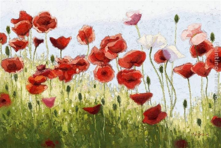 2011 Mountain Poppies III